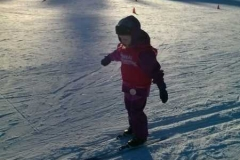 Endelig skiskole for Elgene. Nydelige forhold!