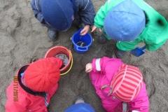 Blåveisene ville også hjelpe til med å lete etter mark