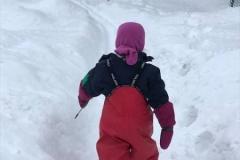 2 øvelse: Skiskyting